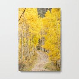 Yellow Road Metal Print