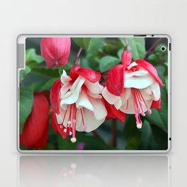 Fuchsia Laptop & iPad Skin