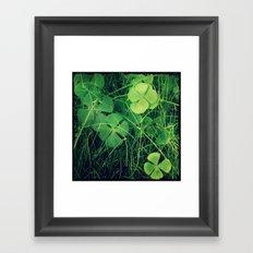 So Lucky!  Framed Art Print