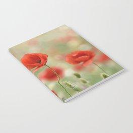 Dream poppies. Wonderful spring Notebook