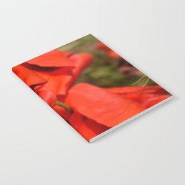 poppies III Notebook