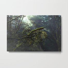 Into the green woods Metal Print