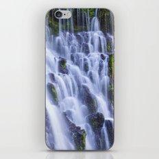 Burney Falls iPhone & iPod Skin
