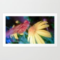 hungry butterfly Art Print