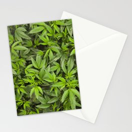 Sweet Leafs Stationery Cards