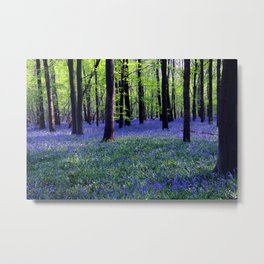 drowning in the bluebell sea Metal Print