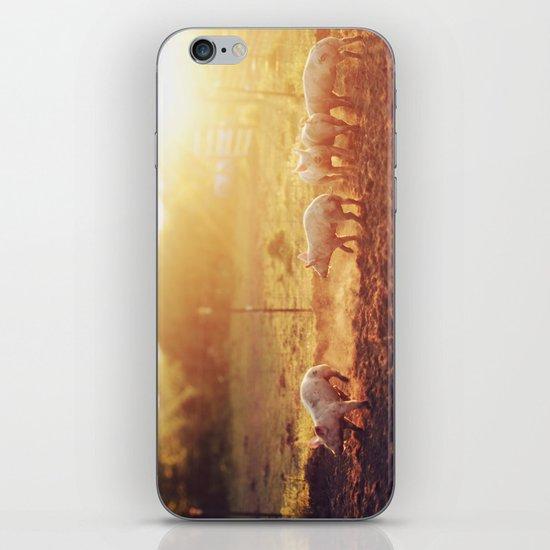 Pig Dust iPhone & iPod Skin
