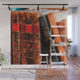 Rustic Antique Library Books Shelf Wall Mural