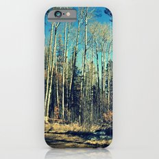 Aspens in Winter  iPhone 6s Slim Case