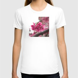 Droplets on Dark Pink Crabapple Blossoms T-shirt