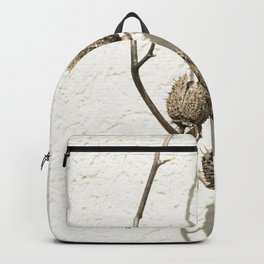 Dry plant Backpack