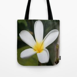 A Single Plumeria Flower Macro  Tote Bag