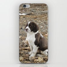 Baby Freckles iPhone & iPod Skin