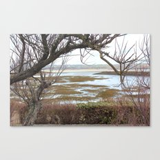 The tree before the water Canvas Print