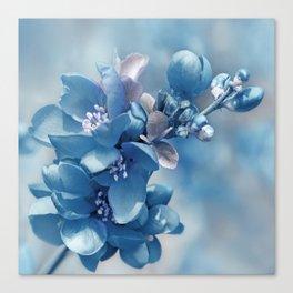 Blue 81 Canvas Print