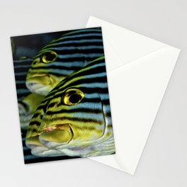 Sweetlips Stationery Cards