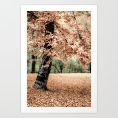 magical Fall Art Print