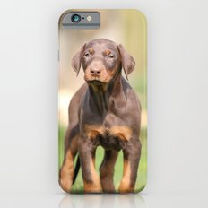 doberman pinscher iPhone 6s Slim Case