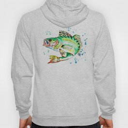 Sauger Watercolor Fish Painting Hoody