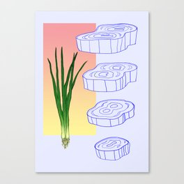 scallion cross section graphic Canvas Print