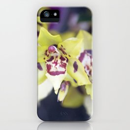 Longwood Gardens Orchid Extravaganza 74 iPhone Case