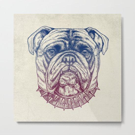 Gritty Bulldog Metal Print