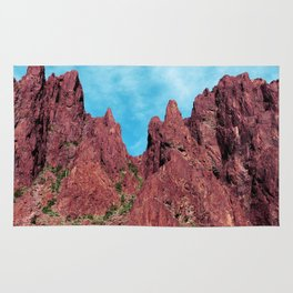 Palm Canyon Arizona Rug