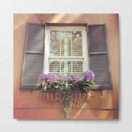 Savannah Window Metal Print
