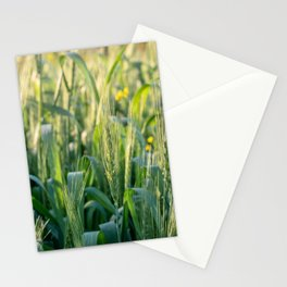 Summer goodness Stationery Cards