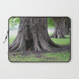 Cambridge tree 4 Laptop Sleeve