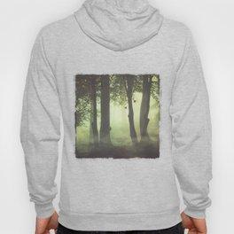 Wispy Forest Mists Hoody