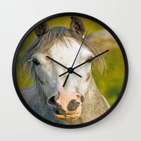 pony Wall Clocks featuring Welsh Pony  by Doug McRae