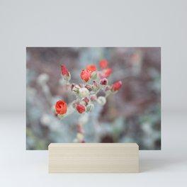 Desert Blooms Mini Art Print