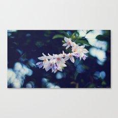 Romantic flowers Canvas Print