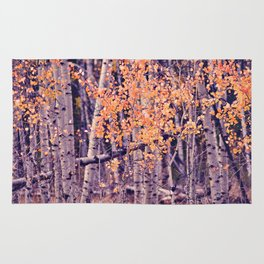 Autumn Orange I Rug