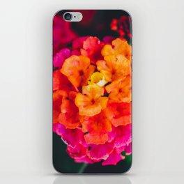 Color Pop Flower iPhone Skin