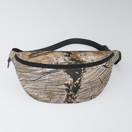 Archaic Flying Cross Fanny Pack