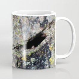 Green mossy bark Coffee Mug