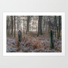 Misty Forest Sunrise Art Print