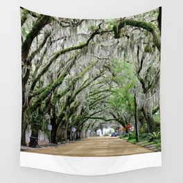 The Fountain of Youth 450th Year Celebration Wall Tapestry