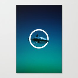 Shark. Canvas Print