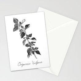 Oregano Botanical Illustration Stationery Cards