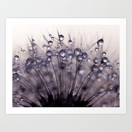 dandelion purple III Art Print