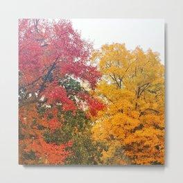 Fall Leaves in Memphis Metal Print