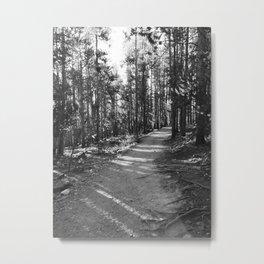The Common Path Metal Print