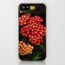 In the New Garden iPhone Case