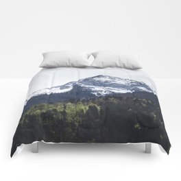 Winter and Spring - green trees and snowy mountains Comforters