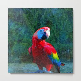 Red Parrot Tropical Bird Painting Metal Print