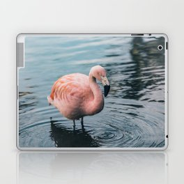 Lone Flamingo Laptop & iPad Skin