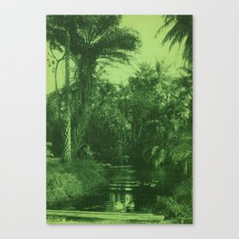 Vintage Tropical Scene Canvas Print